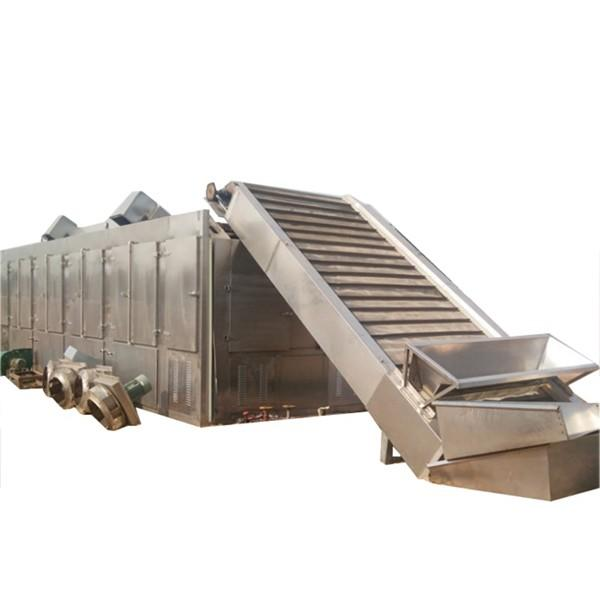 Automatic Heat Pump Industry Seafood Fruit Drying Machine Vegetable Dehydrator Mesh Belt Apple Banana Mango Fish Cucumber Hot Air Dryer
